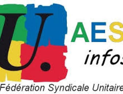 A.E.S.H. : un guide pratique édité par la FSU09